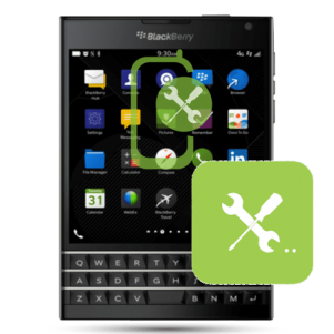 BlackBerry Passport Other Faults